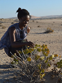 Rosa-Stella Mbulu