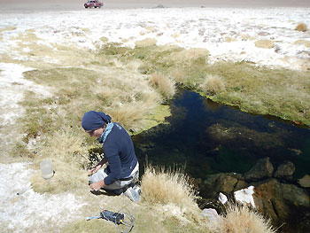 Pond water sampling at the Salar de Huasco Swea Klipsch 2 350px