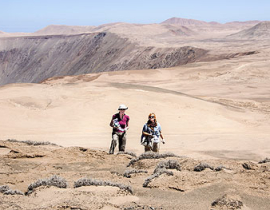 B4 - Bacteria: Distribution and activity of microorganisms in the Atacama Desert